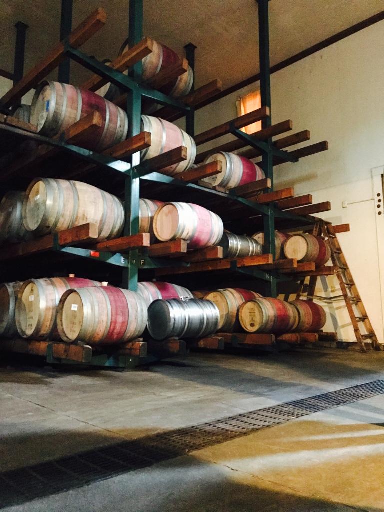 Beneath the Borealis Joni & Julia Part II Beach California Coast Wine Preston Winery