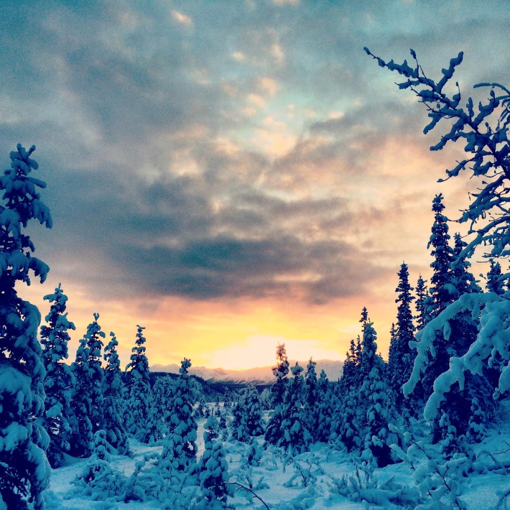 Beneath the Borealis 12/11/17 The Cult Alaskan Winter