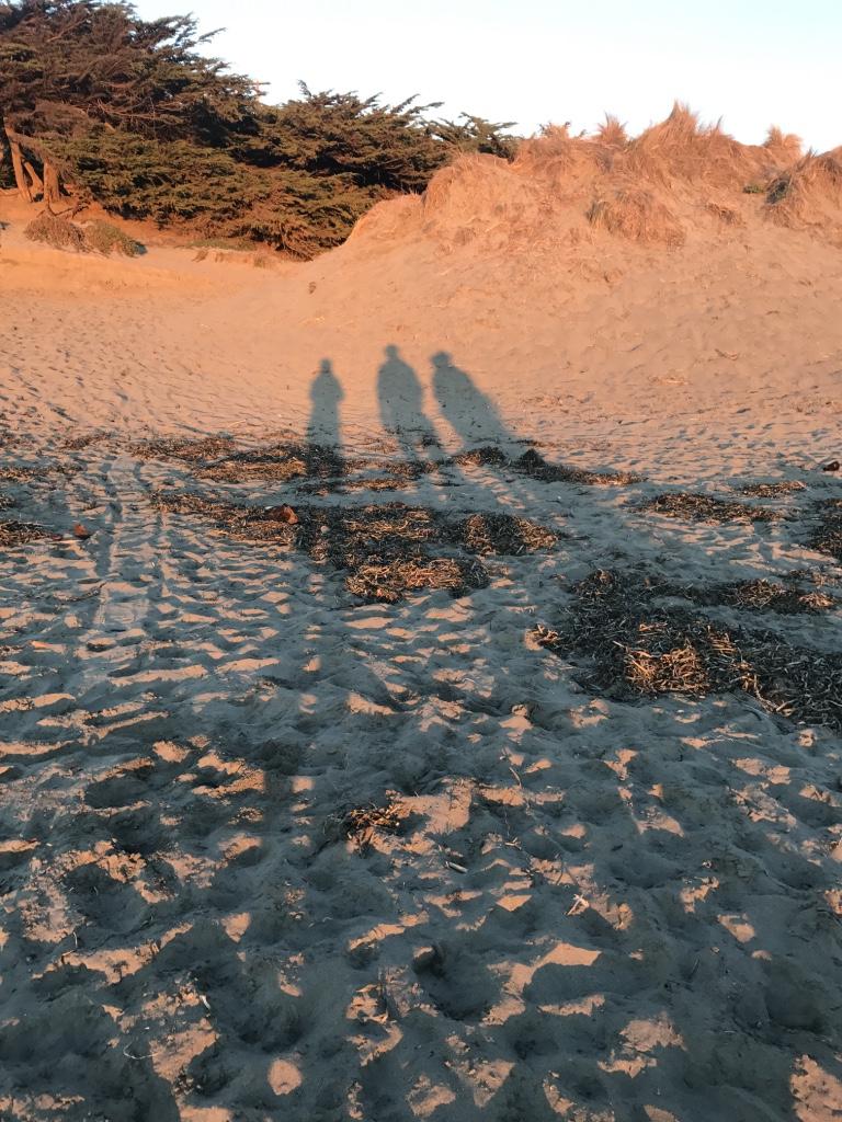 Beneath the Borealis 12/11/17 The Cult Dillon Beach 2