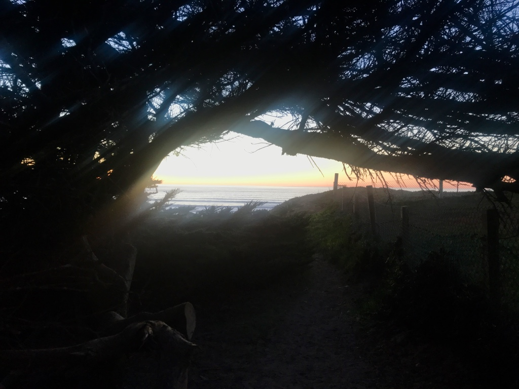 Beneath the Borealis 12/11/17 The Cult Dillon Beach