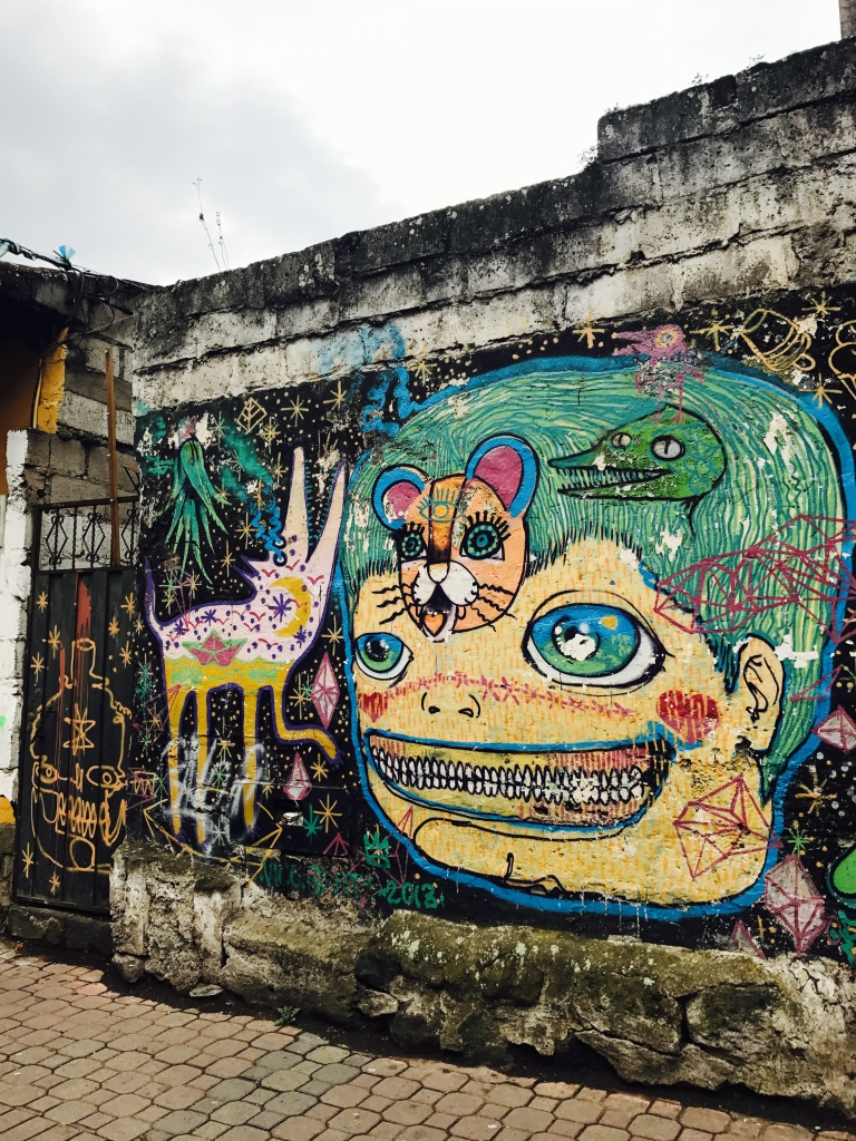 Beneath the Borealis 5 Things to Expect When You're Expecting Street Art in Banos Ecuador