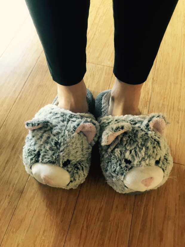 Beneath the Borealis The Good in the Bad and the Ugly Northern California Kitty Slippers