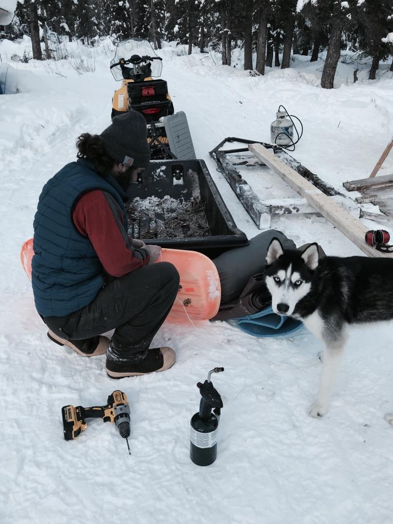Beneath the Borealis In Celebration of Women Skijor Sled