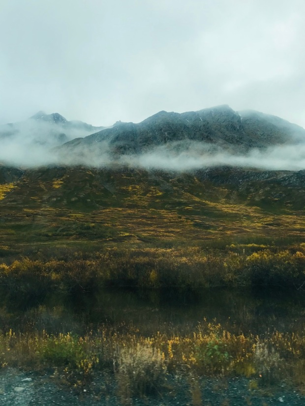 Beneath the Borealis, 11-25-19, Porcupup, Valdez, AK