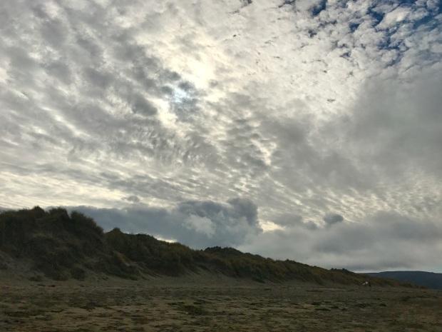 Beneath the Borealis, 40 Below (Alone), January 27th, 2020, California Dillon Beach