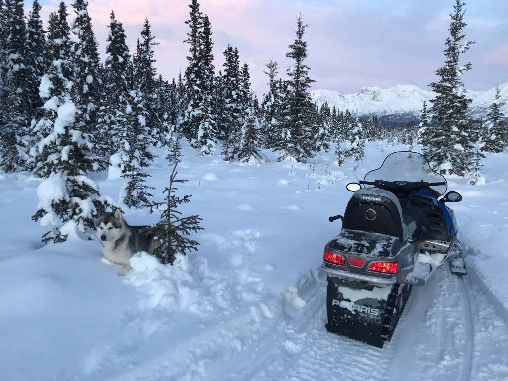 Beneath the Borealis, 40 Below (Alone), January 27th, 2020, Snowmachining in Alaska