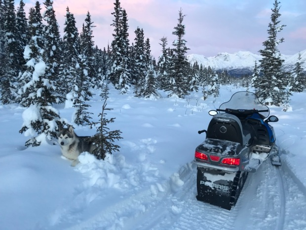 Beneath the Borealis, 40 Below (Alone), January 27th, 2020, Snowmachining in Alaska