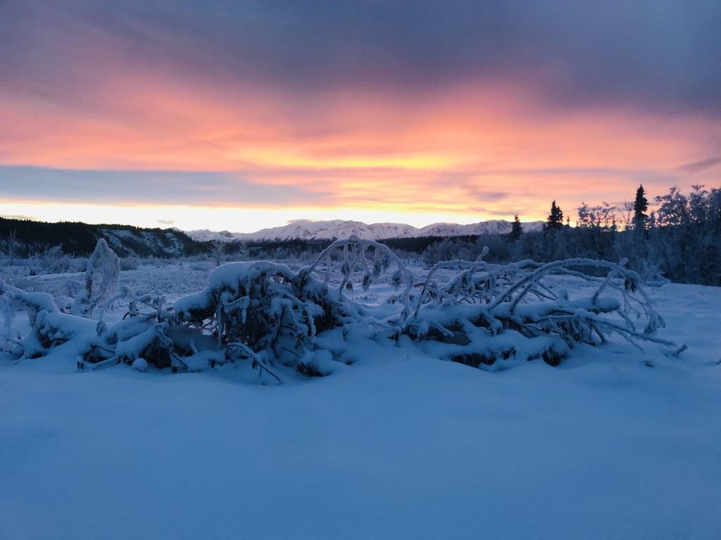Beneath the Borealis Post Cabin Fever 02:24:20 December in Alaska