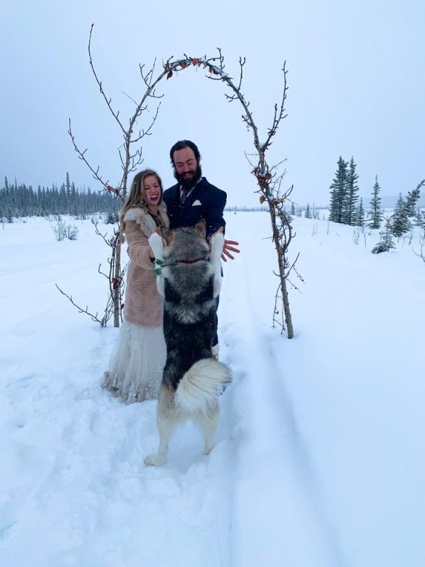 Beneath the Borealis, 03:09:20, The Sweetness of Saturdays, Alaskan Malamute Puppy High Five