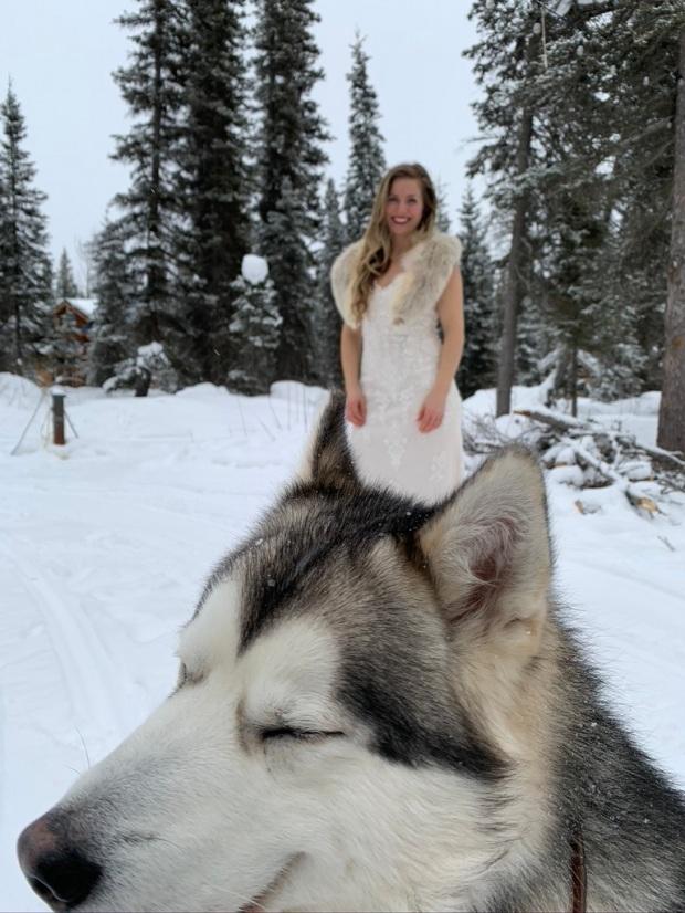Beneath the Borealis, 03:09:20, The Sweetness of Saturdays, Alaskan Malamute Puppy