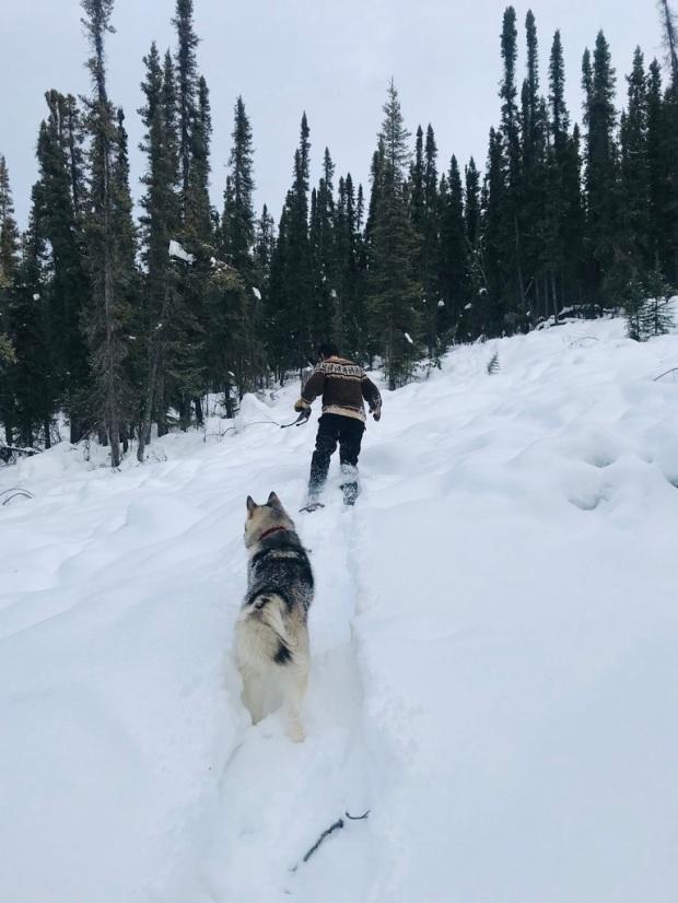 Beneath the Borealis, 03:09:20, The Sweetness of Saturdays, Snowshoeing in Alaska