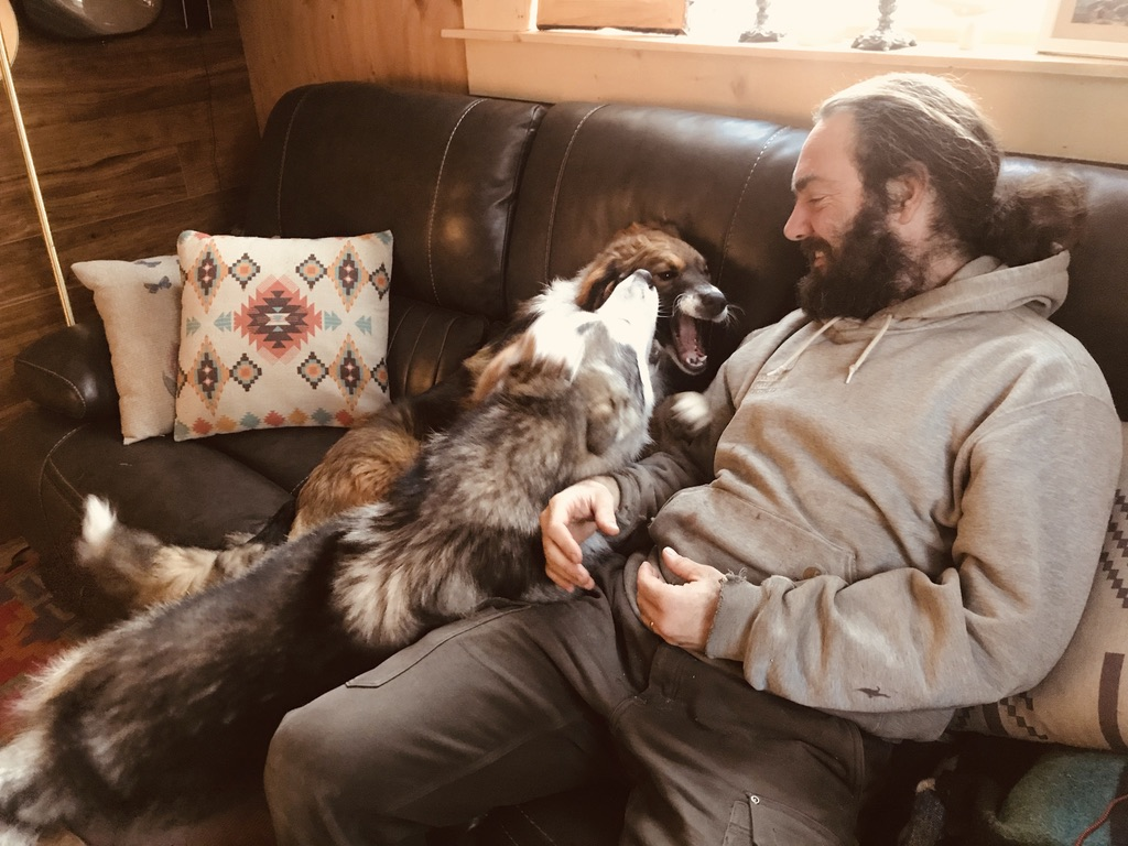 Beneath the Borealis, Alaskan Puppy Love, Alaskan Malamute I Love You