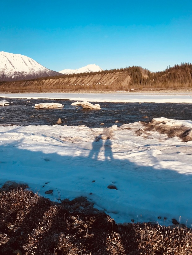 Beneath the Borealis, Alaskan Puppy Love, The Chesters of Alaska