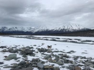 Beneath the Borealis, The Beauty Pendulum, 06-01-20, Nature in Alaska
