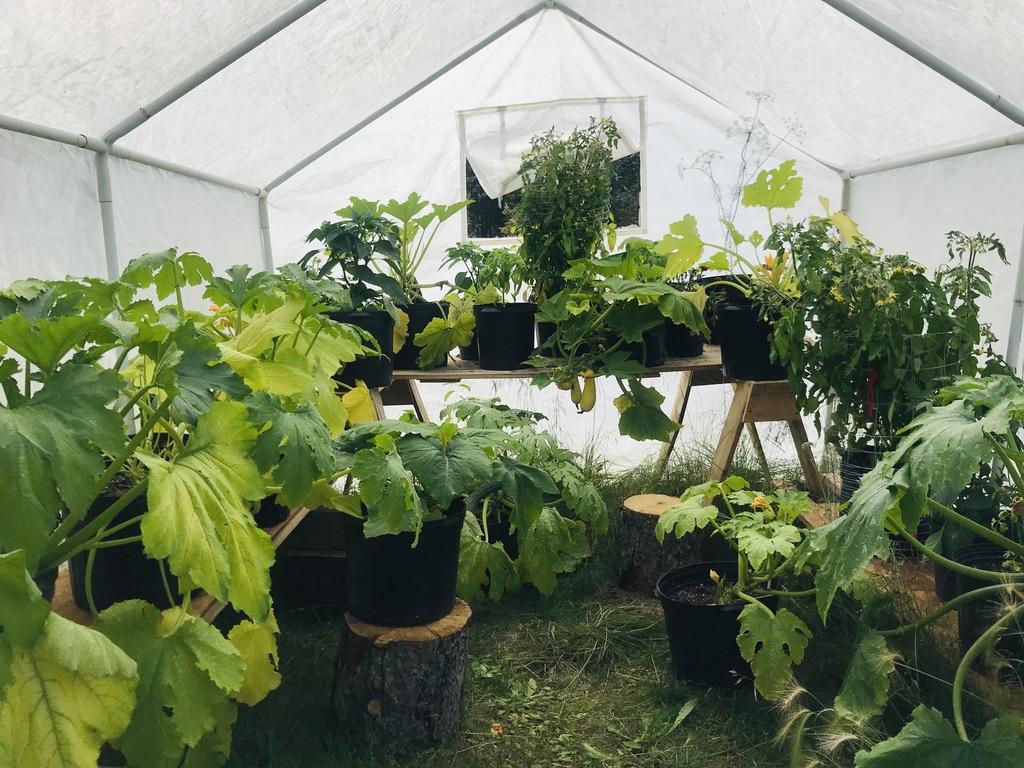 Greenhouse Alaska