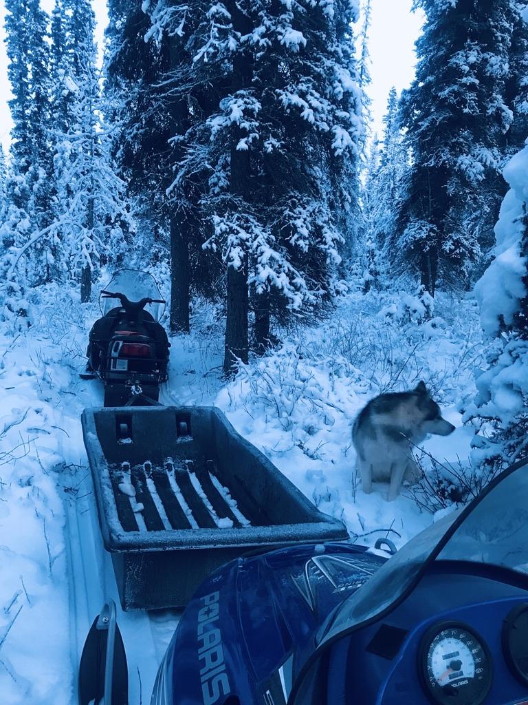 Off-grid Alaska