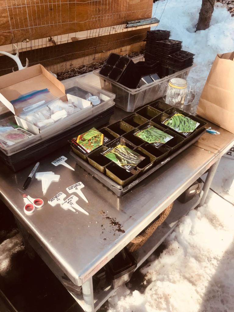 Raised bed gardening in Alaska